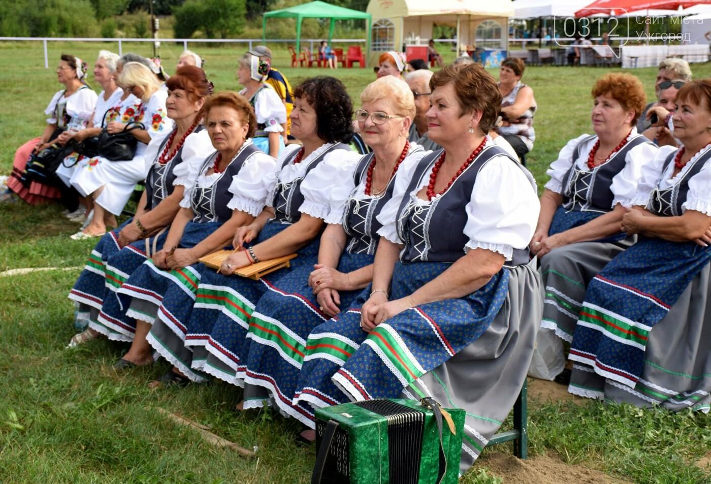 «Kam Tour» на Ужгородщині: рекорди по кількості дітей і майстер-класів на квадратний метр (ФОТОРЕПОРТАЖ), фото-3