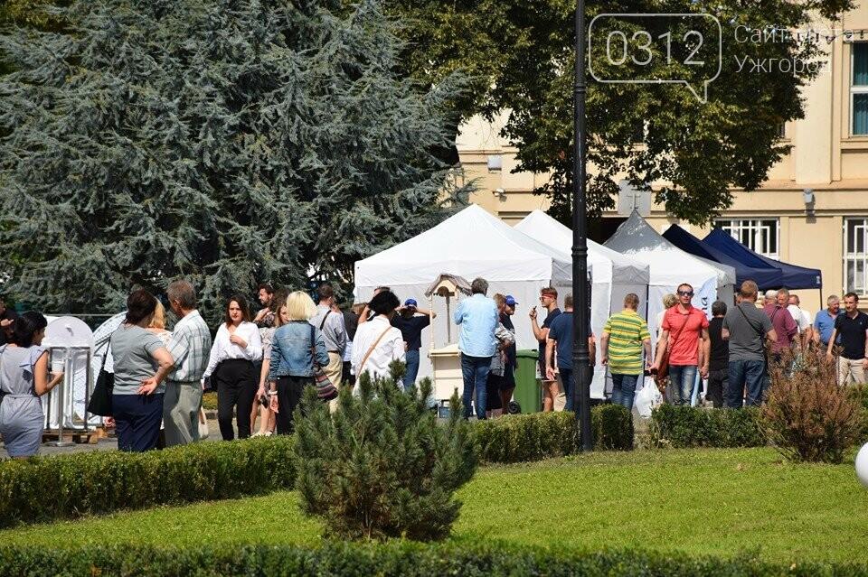 Чехія в Ужгороді: три дні чеського колориту на Народній (ФОТОРЕПОРТАЖ), фото-5