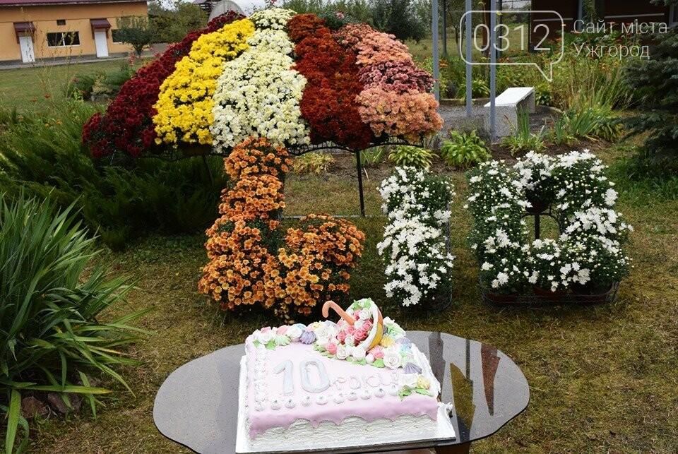 Реабілітаційний центр «Парасолька» на Закарпатті відсвяткував 10-річний ювілей (ФОТОРЕПОРТАЖ), фото-2