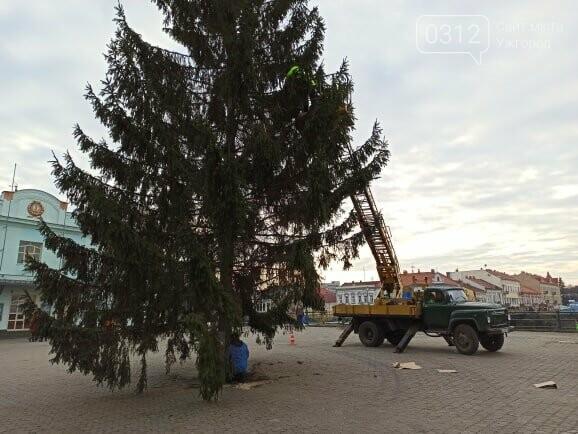 Цьогоріч на головну ялинку Ужгорода повішають близько 500 кульок (ФОТО), фото-1