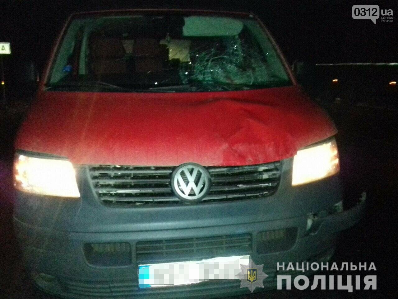 На Закарпатті водій автомобіля «Volkswagen»  насмерть збив пішохода  (ФОТО), фото-1