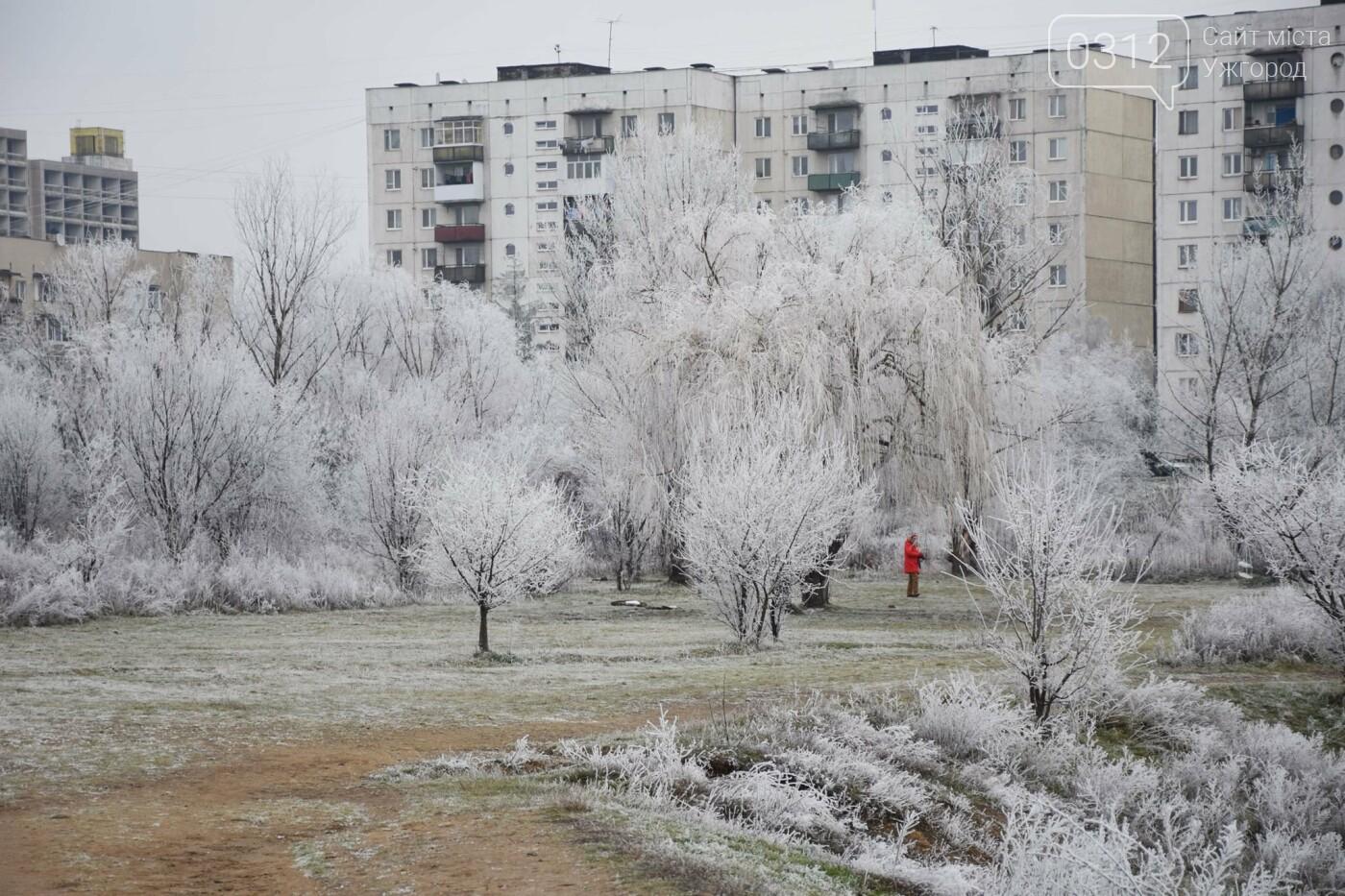 Ужгородський парк «Кірпічка»: засніжений і без снігу, фото-2