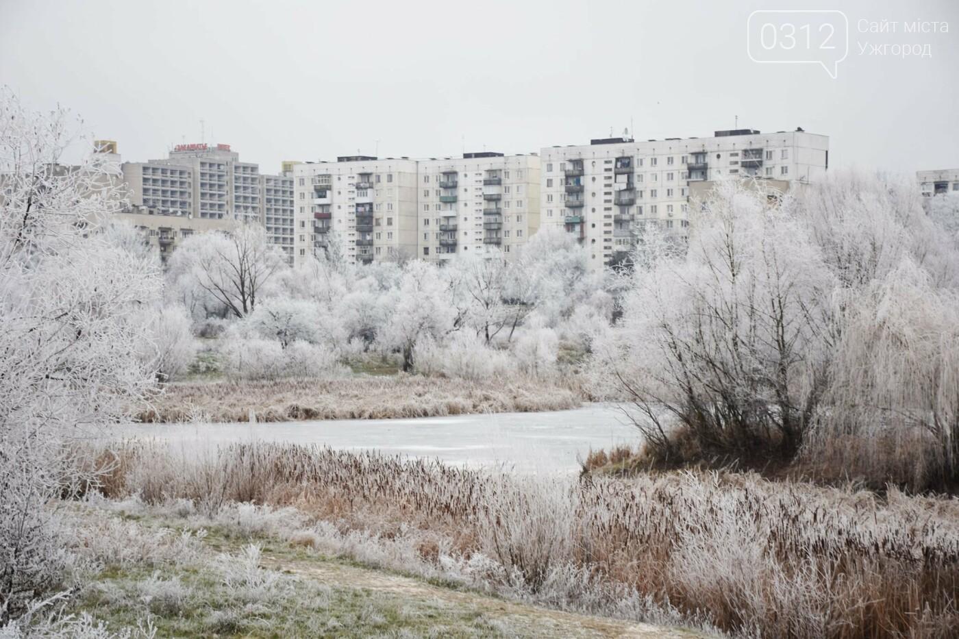 Ужгородський парк «Кірпічка»: засніжений і без снігу, фото-3