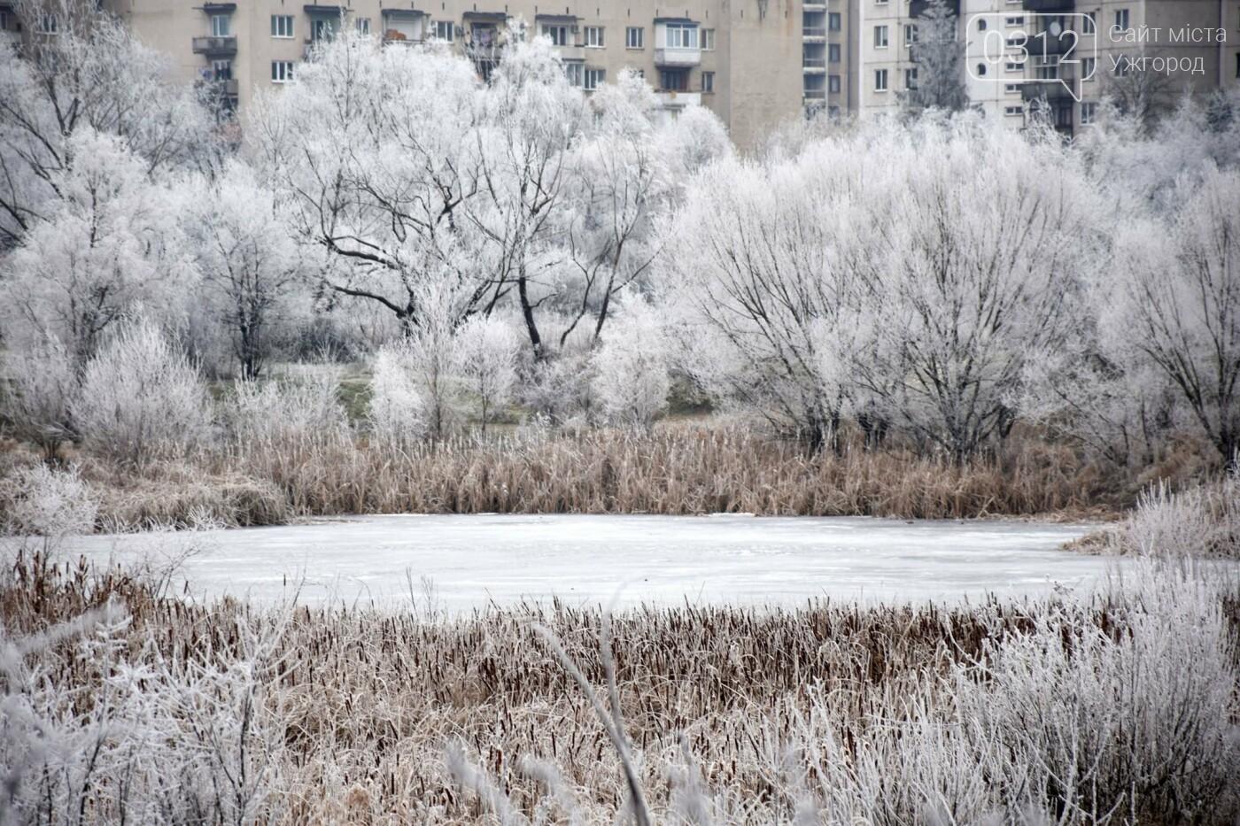 Ужгородський парк «Кірпічка»: засніжений і без снігу, фото-6