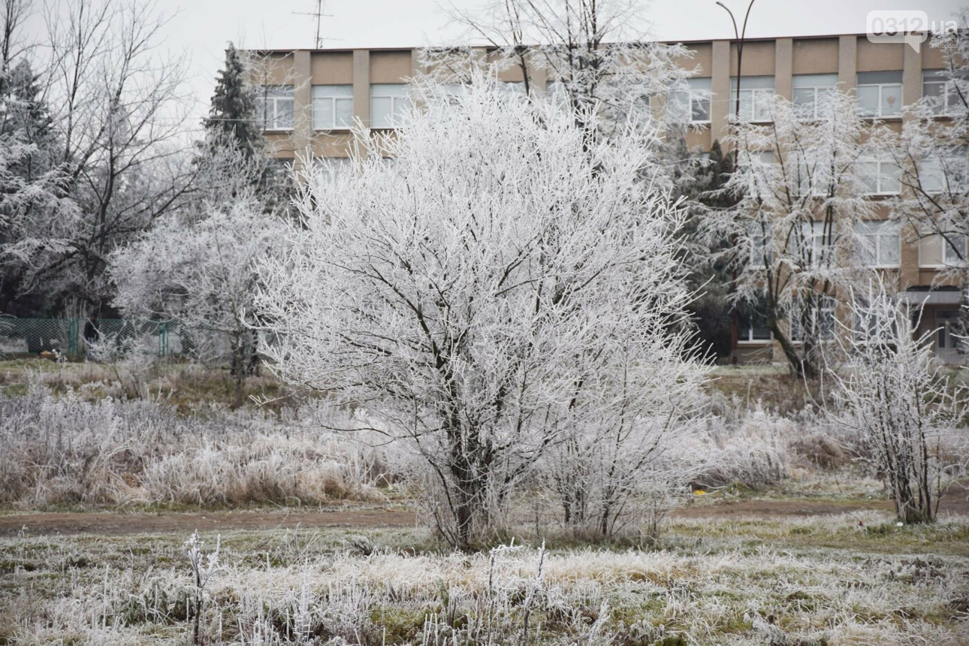 Ужгородський парк «Кірпічка»: засніжений і без снігу, фото-8