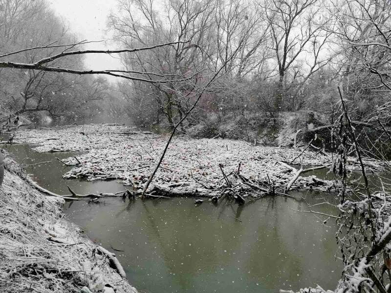 Капці, пляшки та настінний годинник: закарпатські активісти зайнялись розчисткою ріки Боржави (ФОТОРЕПОРТАЖ), фото-1