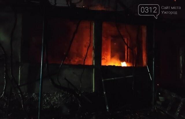 На Закарпатті за добу у пожежах загинуло дві людини (ФОТО), фото-2