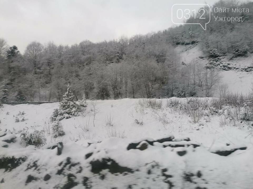 Західну частину Закарпаття замело снігом (ФОТОРЕПОРТАЖ), фото-1