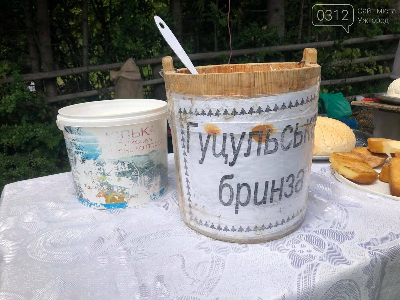 Добра традиція: на Міжгірщині урочисто провели отари на полонину (ФОТО, ВІДЕО), фото-10
