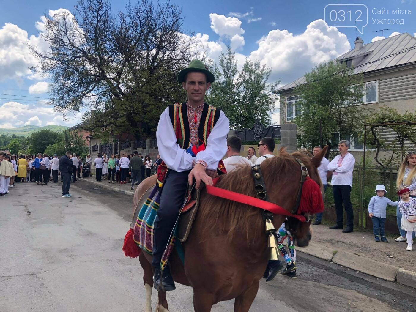 Добра традиція: на Міжгірщині урочисто провели отари на полонину (ФОТО, ВІДЕО), фото-12