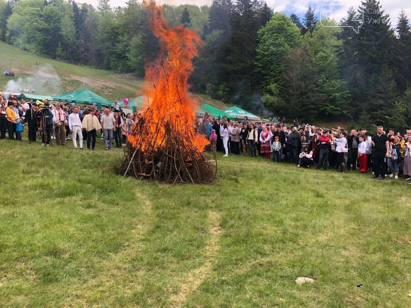 Добра традиція: на Міжгірщині урочисто провели отари на полонину (ФОТО, ВІДЕО), фото-7