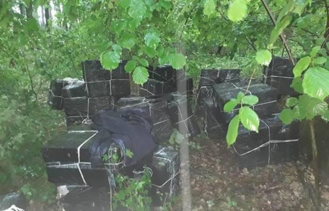 Угорські прикордонники поблизу Закарпаття знайшли 29 тисяч пачок цигарок вартістю 30 мільйонів форинтів: фото, фото-1