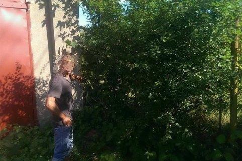У Мукачеві 18-річний злочинець вмовив дитину здійснити крадіжку із місцевого коледжу: фото, фото-1