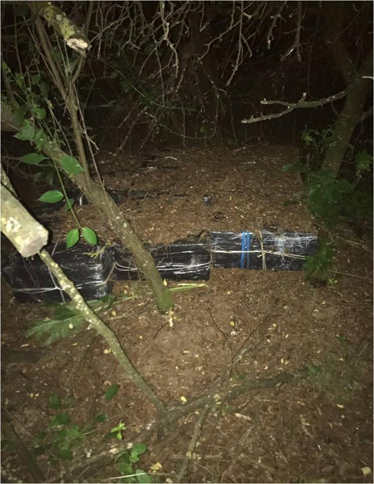Серед ночі закарпатські прикордонники виявили 9 ящиків контрабандних цигарок: фото, фото-2