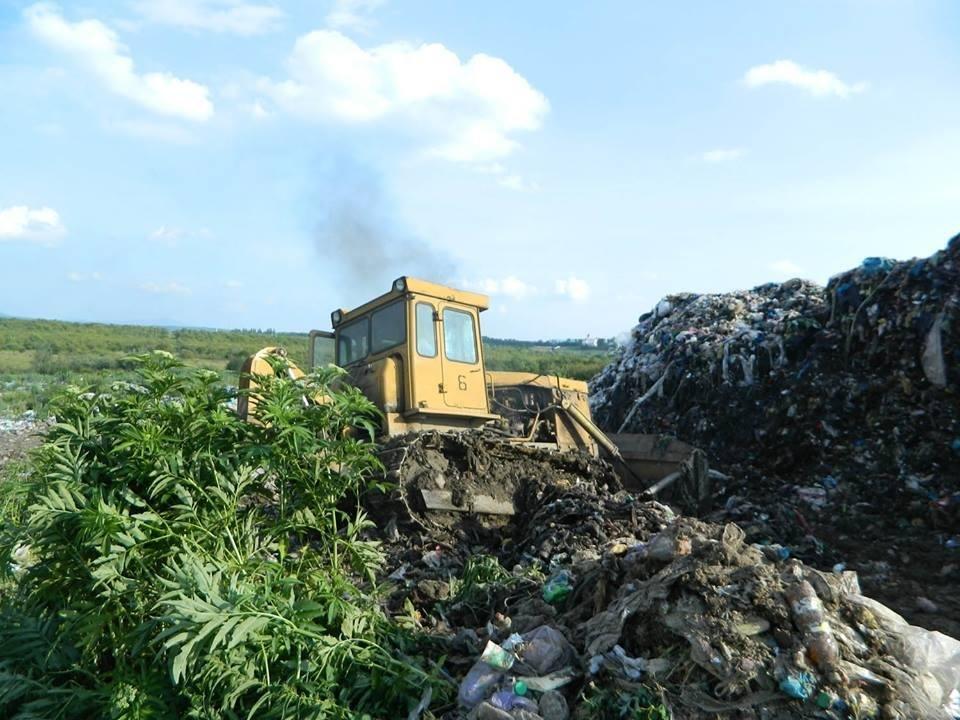 Сміттєзвалище біля Іршави знову загорілося: фото, фото-1