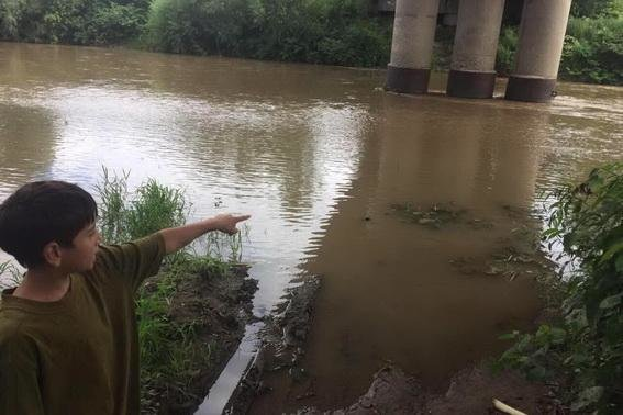 Пірнув за м'ячем і не повернувся: подробиці утоплення 8-річної дитини у Мукачеві (ФОТО) , фото-1
