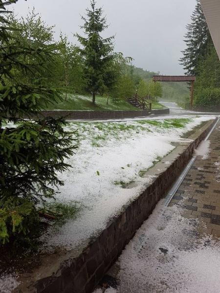 На Воловеччині випав мокрий сніг і опустилася температура до 6-7 градусів тепла: фото, фото-2