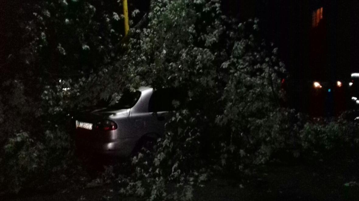 Нічна гроза: в Ужгороді дерева потрощили машини, частина Закарпаття - без світла (ФОТО), фото-2