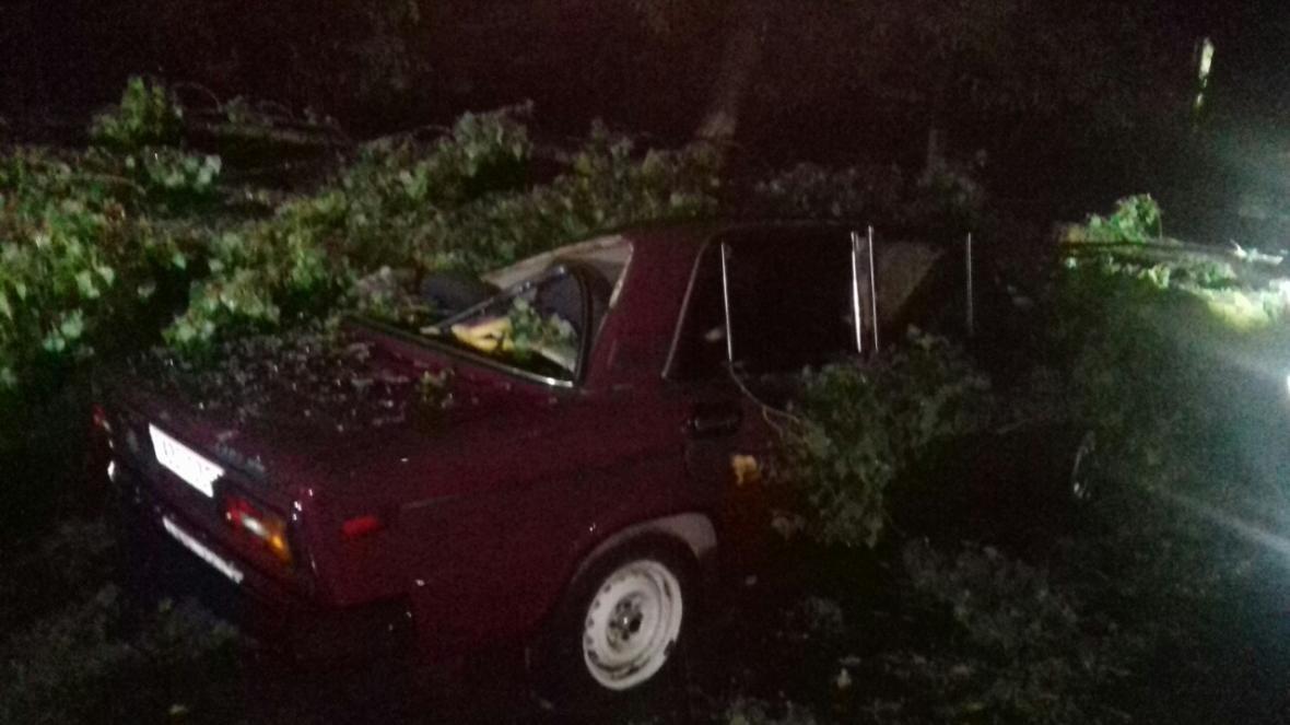 Нічна гроза: в Ужгороді дерева потрощили машини, частина Закарпаття - без світла (ФОТО), фото-3