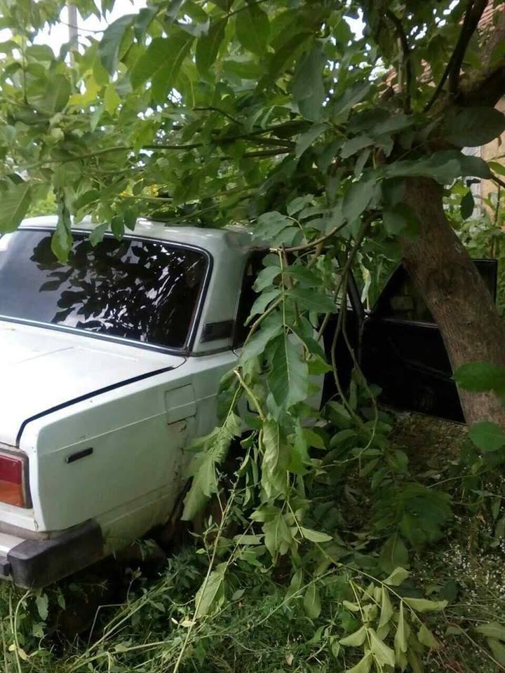 """На Іршавщині п'яний водій на """"Жигулях"""" врізався у дерево: фото, фото-1"""