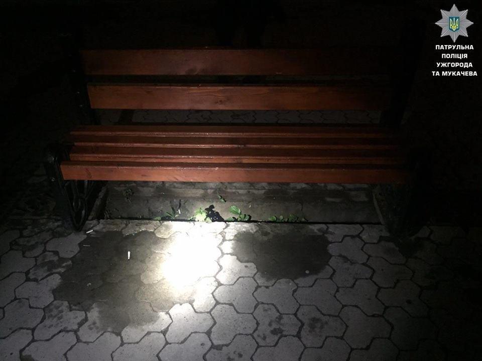 В Ужгороді затримали молодиків, які крали металеві люки у центрі міста: фото, фото-1