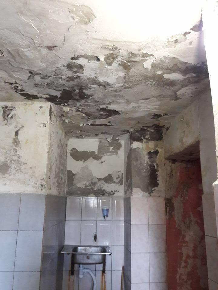 Цілковита антисанітарія: як виглядає громадський платний туалет у центрі Ужгорода (ФОТО), фото-1