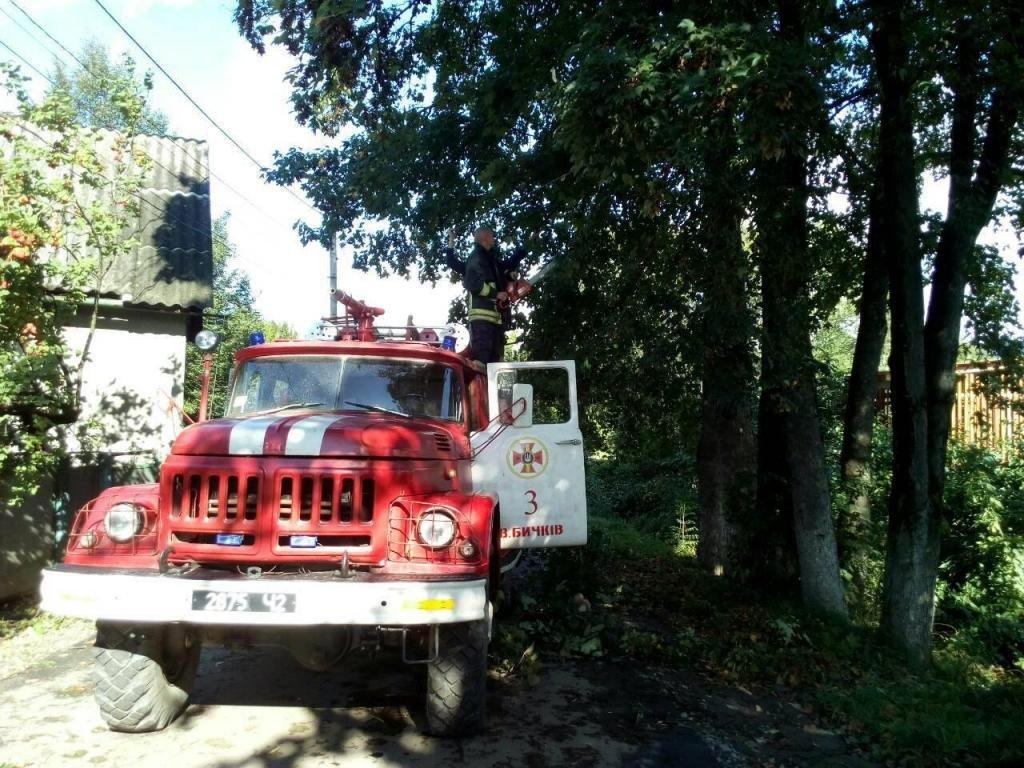 Негода на Закарпатті: 36 сіл без світла, лікарня без даху та два десятки повалених дерев (ФОТО, ВІДЕО), фото-3
