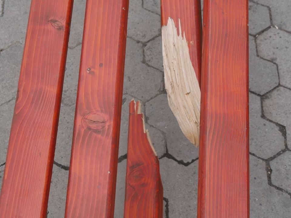 Ужгородські вандали понищили нещодавно встановлені на Театральній лавиці: фото, фото-3
