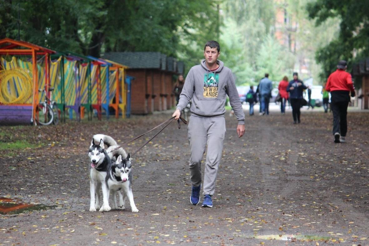 В Ужгороді у Боздоському парку пройшла масштабна виставка собак: фото, фото-6