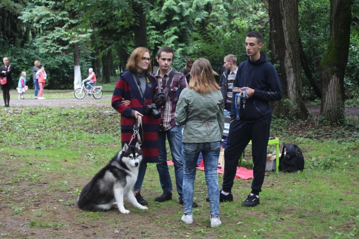 В Ужгороді у Боздоському парку пройшла масштабна виставка собак: фото, фото-7