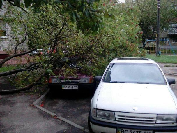 Вночі на Заході України пройшов потужний буревій: 18 населених пунктів Закарпаття - без світла (ФОТО), фото-6