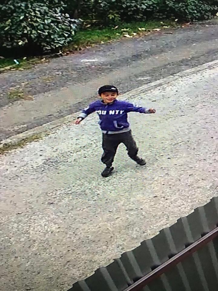 Ужгородка опублікувала відео, як троє дітей на Минайській ламають нещодавно посаджену сакуру, фото-2