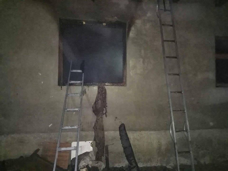 Рятувальники опублікували фото та розповіли деталі смертельної пожежі на Виноградівщині, фото-2