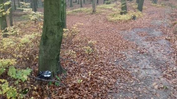 На Закарпатті добросовісний чоловік здав у поліцію арсенал боєприпасів, який знайшов у лісі: фото, фото-2