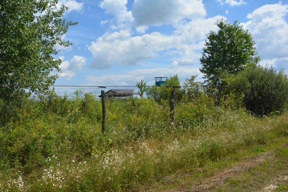 На Закарпатті затримали чиновницю, яка незаконно відбирала землі поблизу держкордонів України: фото, фото-3