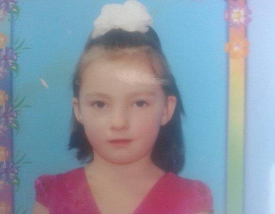 Посварилась з батьками і пішла з дому: на Закарпатті дві доби розшукують 11-річну дівчинку: фото, фото-1