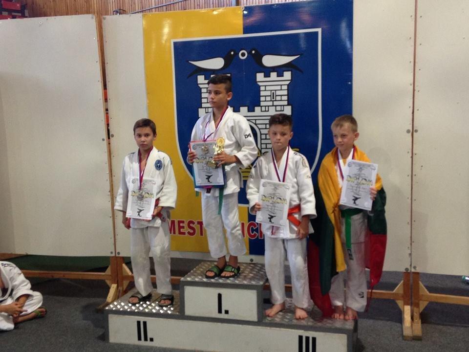 Юні ужгородські дзюдоїсти привезли зі змагань у Румунії 8 медалей: фото, фото-4