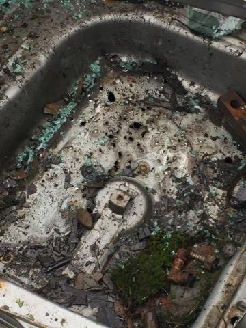 На Закарпатті депутату, який опублікував фото лісничого-браконьєра із вбитою риссю, вночі підірвали машину: фото, фото-5