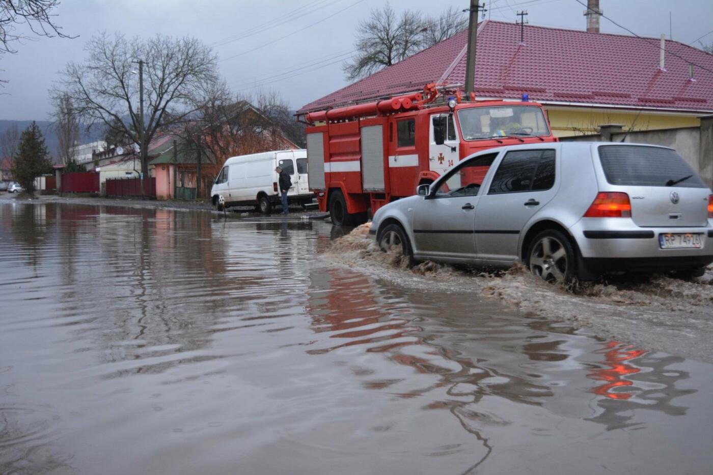 Закарпаття затопило: 490 гектарів сільгоспугідь, житлові помешкання та дороги під водою: фото, фото-9