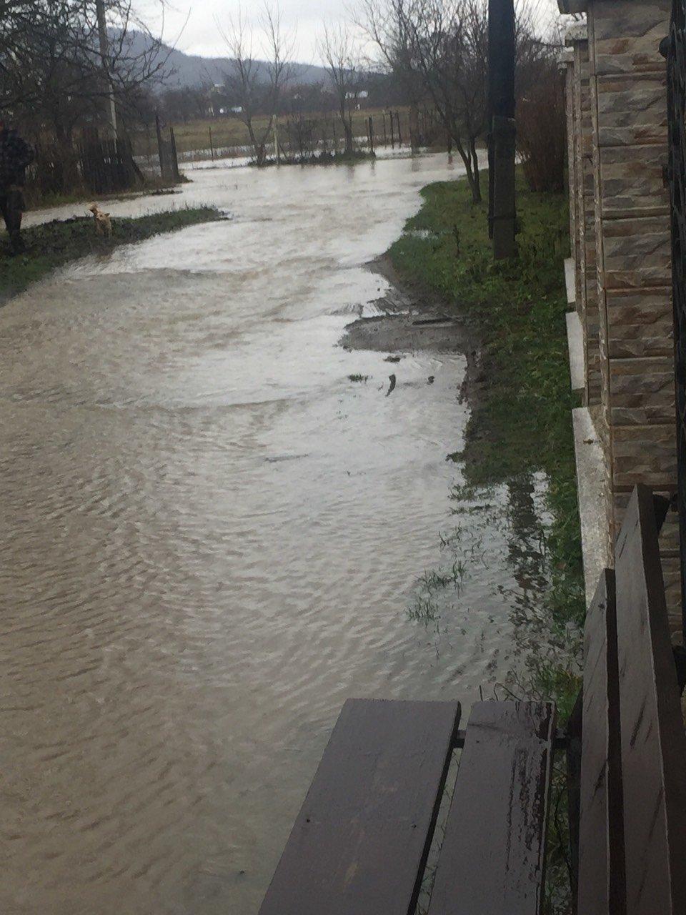 Закарпаття затопило: 490 гектарів сільгоспугідь, житлові помешкання та дороги під водою: фото, фото-1