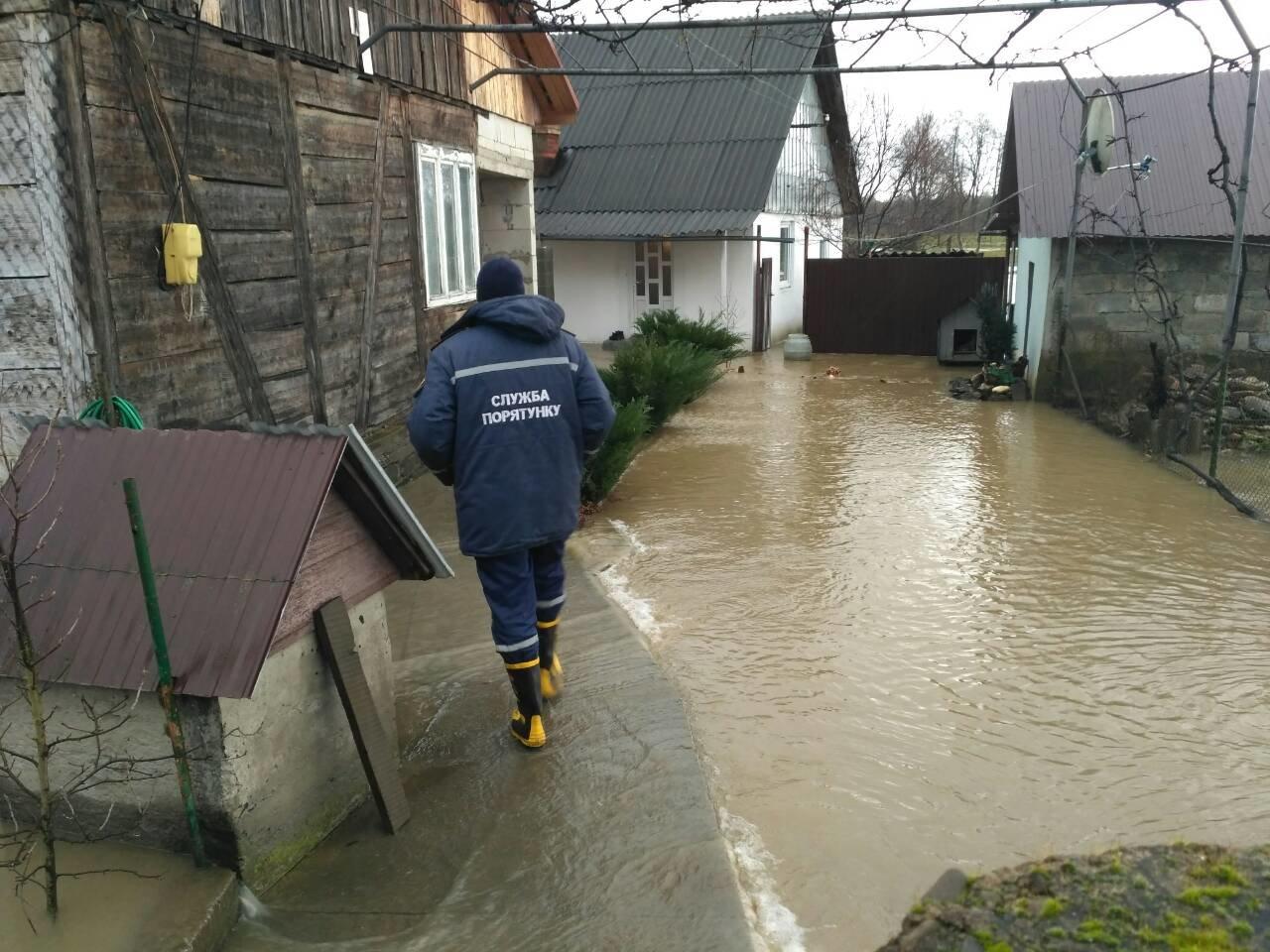 Закарпаття затопило: 490 гектарів сільгоспугідь, житлові помешкання та дороги під водою: фото, фото-3