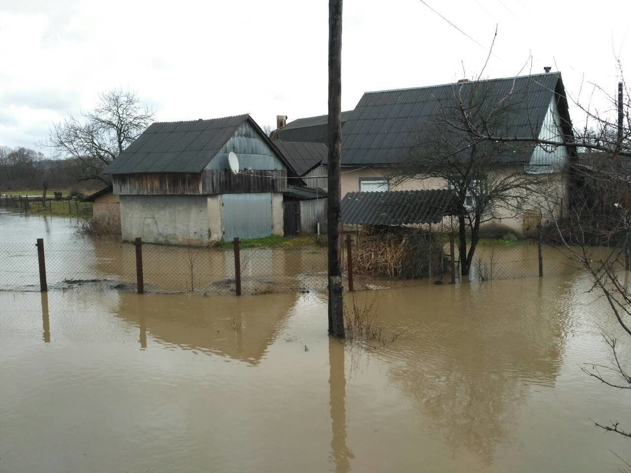 Закарпаття затопило: 490 гектарів сільгоспугідь, житлові помешкання та дороги під водою: фото, фото-2