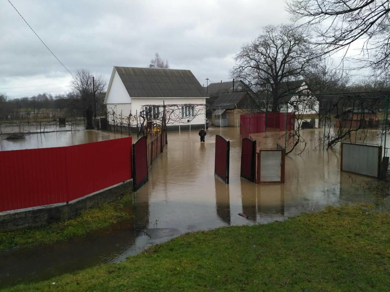 Закарпаття затопило: 490 гектарів сільгоспугідь, житлові помешкання та дороги під водою: фото, фото-5