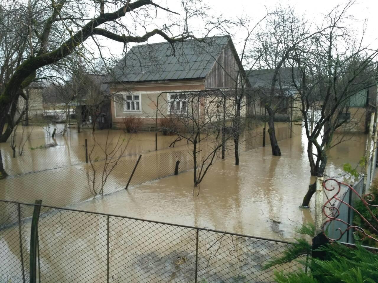 Закарпаття затопило: 490 гектарів сільгоспугідь, житлові помешкання та дороги під водою: фото, фото-6