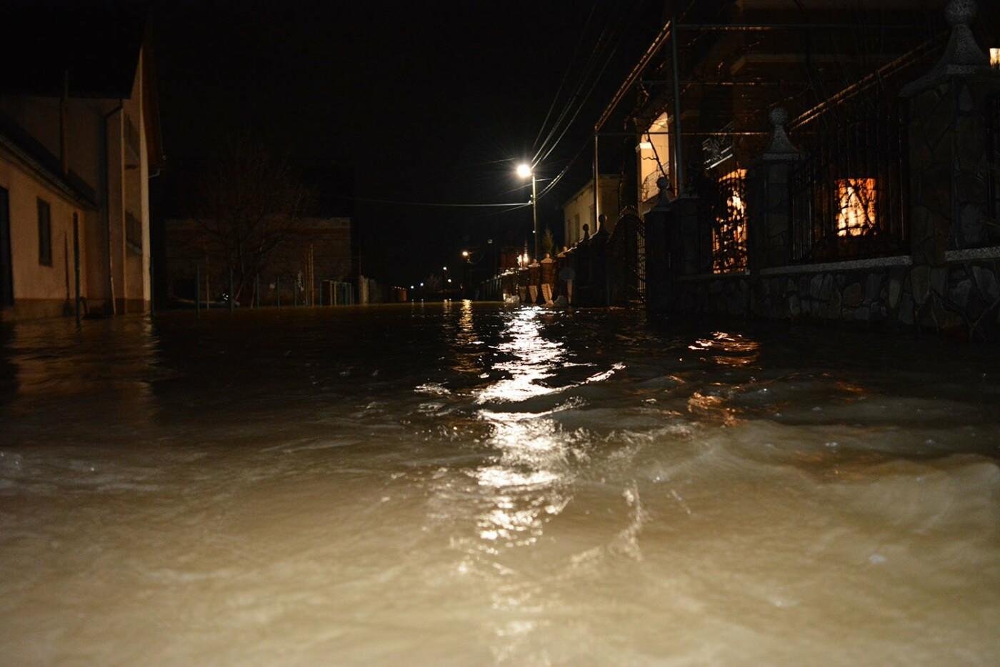 Ситуація стабілізувалася: на Закарпатті човнами евакуювали людей, постраждалих від паводку (ФОТО, ВІДЕО), фото-8