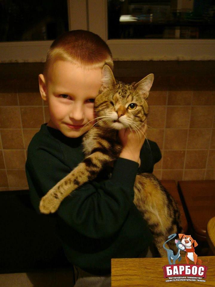 Його викинули на смітник: історія одноокого кота Тьоми, якого прихистила турботлива родина (ФОТО), фото-1
