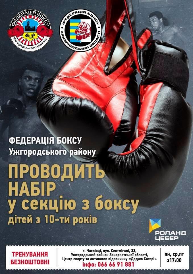 """Федерація боксу Ужгородщини """"розшукує"""" юних боксерів для занять спортом на безоплатній основі, фото-1"""