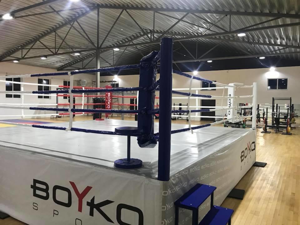 """Федерація боксу Ужгородщини """"розшукує"""" юних боксерів для занять спортом на безоплатній основі, фото-3"""