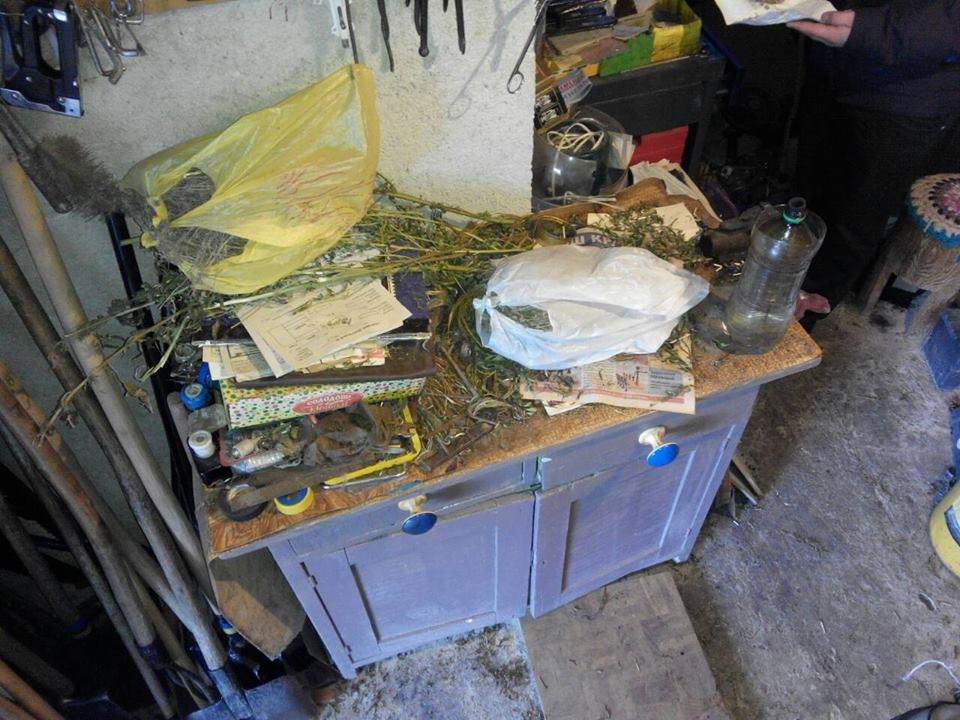 """В Іршаві у помешканні 48-річного чоловіка знайшли півкілограма марихуани та 196 """"нарковмісних"""" кущів: фото, фото-3"""