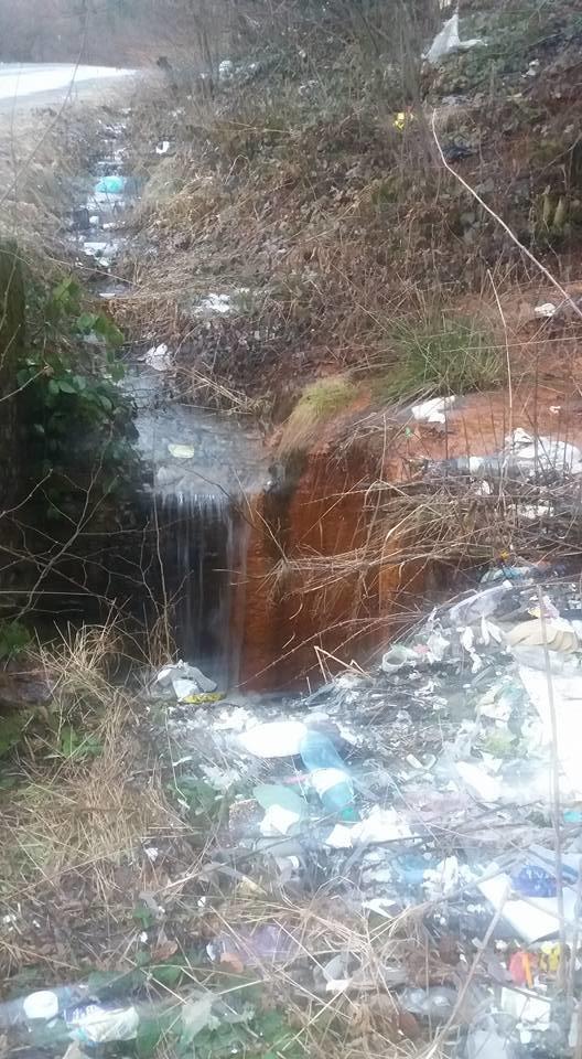Шокуючі фотографії: як виглядає природа на Закарпатті після танення снігу, фото-7